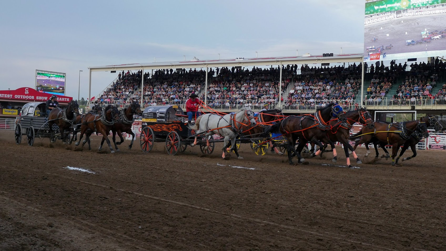 Chuckwagon Driver Suspended After Horse Dies During