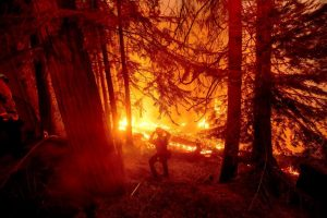 Wildfire forces evacuation of an area in Yellowhead County west of Edmonton